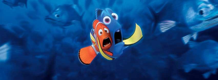 kayıp balık memo oyun fotoğrafı