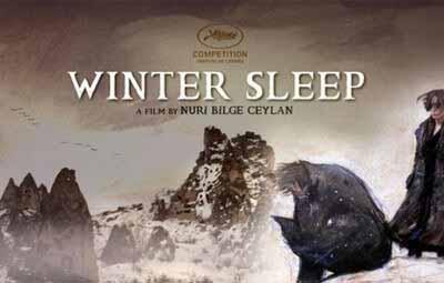 kis-uykusu-winter-sleep