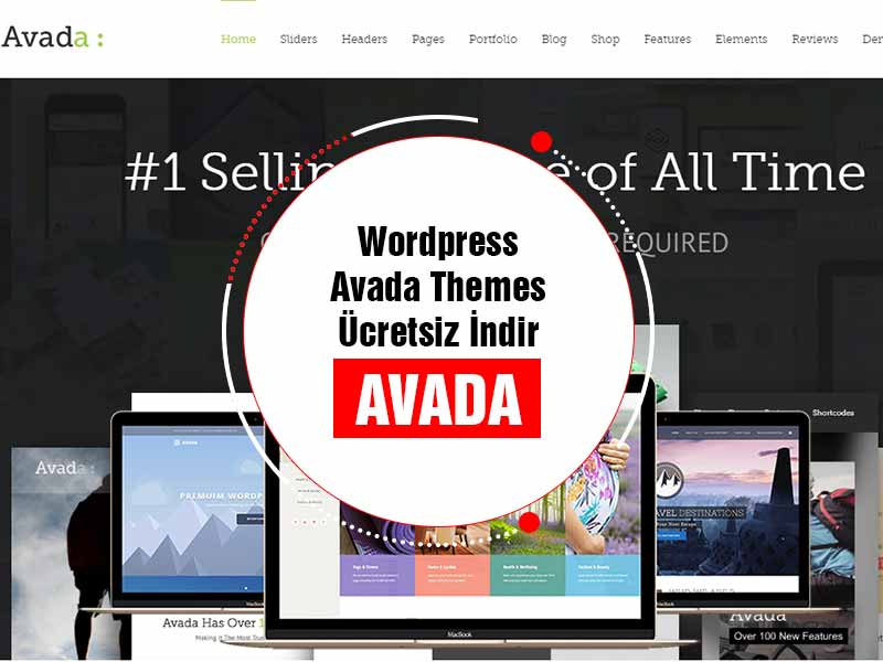 Wordpress Avada Themes Teması Free Full download indir