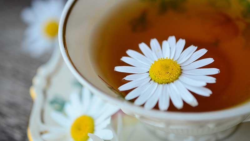 papatya cayi - Sindirim ve Bağışıklık Arttırmak İçin Evde Yapılabilecek Bitkisel Çaylar