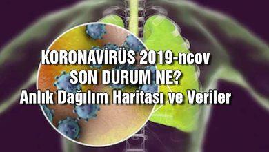 Koronavirüsü 2019-Ncov Son Durum Ne? Belirtiler Neler? Anlık Yayılma Haritası
