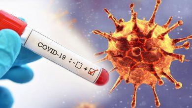 Coronavirüs D614G Mutasyonu Bulaşma Yeteneğini Artırıyor mu?